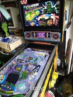 Full Size Virtual Pinball